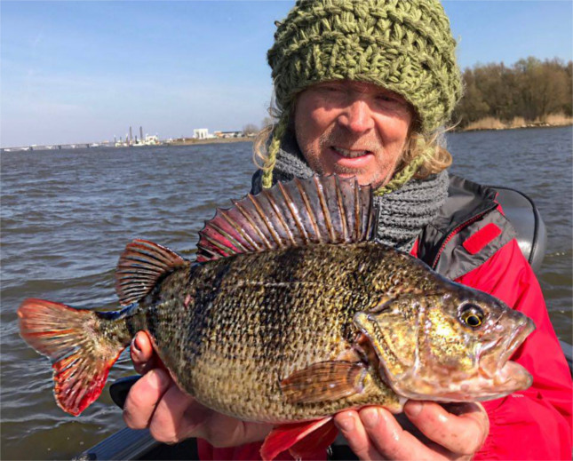 Willem Stolk shows off a fat Dutch Perch, the reason for our visit each year