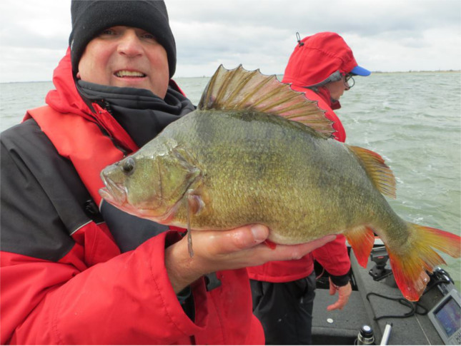 James Gardner with the biggest Perch of this trip 6lb 1/2oz
