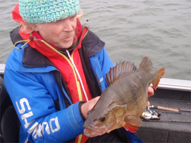 Willem Stolk the Dutch Perch Magician and expert angling guide