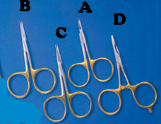 VENIARD GOLD LOOP SCISSORS product image