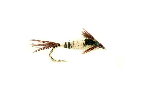 FULLING MILL WALKER'S MAYFLY NYMPH 426 product image