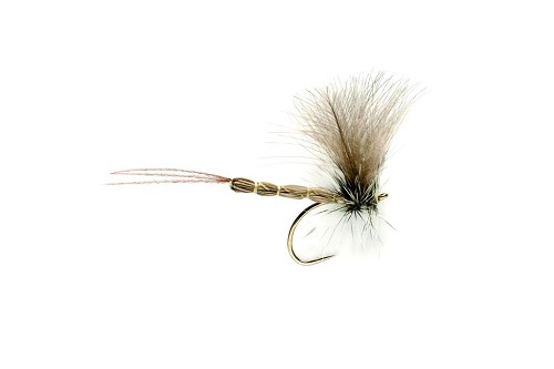 FULLING MILL JT CDC MAYFLY JK109 product image