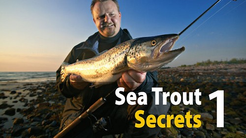 SEA TROUT SECRETS VOL 1 - SPIN [DVD] product image