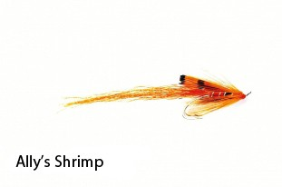 FULLING MILL ALLY'S SHRIMP 1440 product image