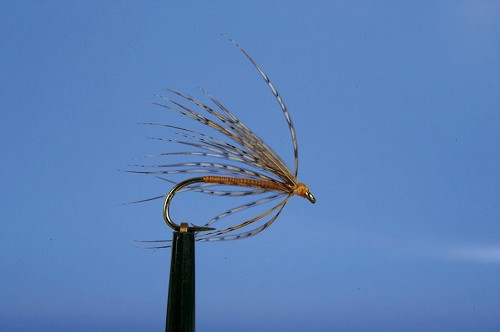 DONEGAL FLIES PARTRIDGE & ORANGE SPIDER product image