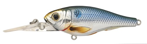 KOPPERS LIVETARGET THREADFIN SHAD SILVER BLUE BACK 201 product image