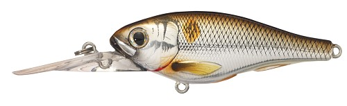 KOPPERS LIVETARGET THREADFIN SHAD SILVER BRONZE BACK 205 product image
