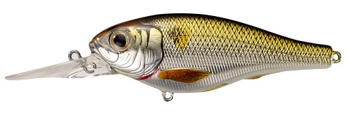 KOPPERS LIVETARGET THREADFIN SHAD GOLD BLACK BACK 208 product image
