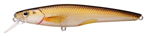 KOPPERS LIVETARGET RAINBOW SMELT MEDIUM GHOST BRONZE BACK 209 product image